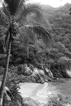 Quadro Praia - Paraíso Preto e Branco