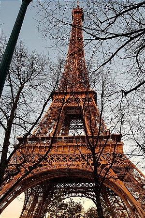Quadro Paisagem - Torre Eiffel Inverno