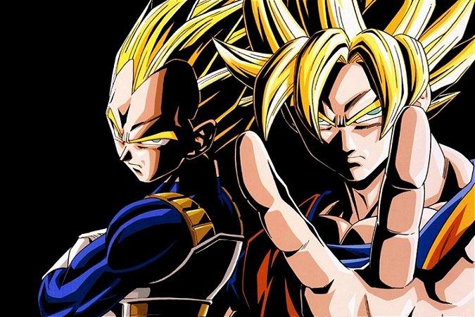 Quadro Dragon Ball - Goku e Vegeta