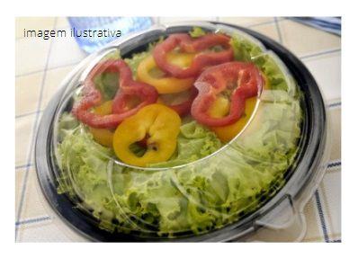 G251- 5 unid - Saladeira para 500 ml com tampa