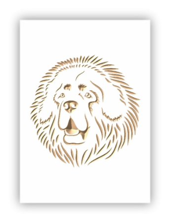 Mastiff Tibetano - Mastim Tibetano