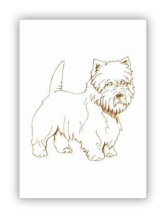 Westie Highland White Terrier 2