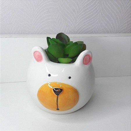 Vaso urso com suculenta