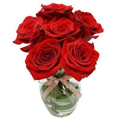 Rosas Vermelhas Colombiana no Vaso