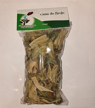Erva desidratada CANA DE BREJO 10g - CETGIB