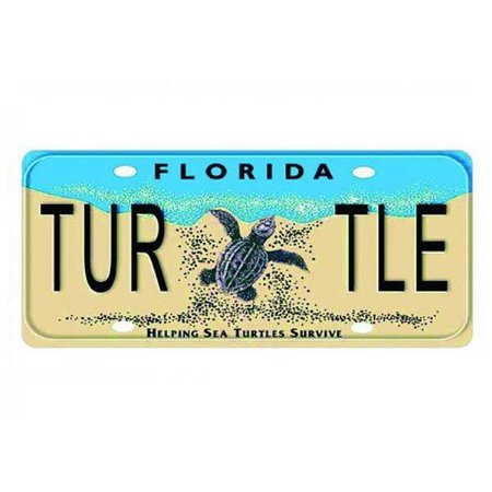 Placa Decorativa de Carro em MDF - Florida Turtle