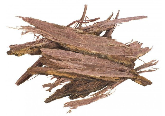 Jurema preta (Mimosa hostilis/tenuiflora) - 100 gramas de cascas do tronco