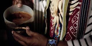 Anahuasca - Kit para preparo de 3 doses (50g de Jurema preta + 10g de Arruda síria)