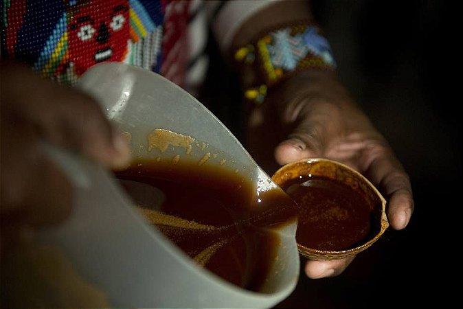 Ayahuasca 10x1 SEMI-MEL (Chacrona + Cipó jagube) - 100 ml