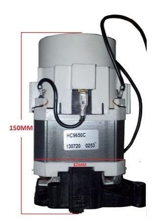 Motor Hidrolavadora Tekna HLX 150 / HLX1502V 1800W - 220V
