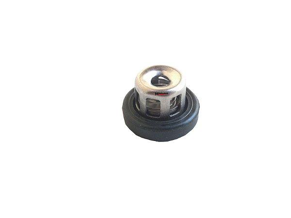 Válvula Admissão e Exaustão Bomba Pulverização Toyama PSP25C / TPS25C