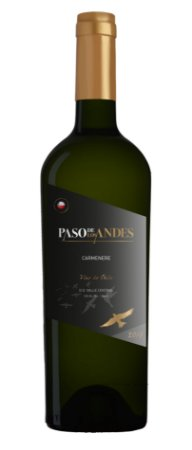 Vinho Tinto Paso de Los Andes Carmenere 750ml