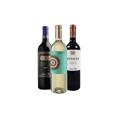 Kit com 3 Vinhos Tintos e Brancos 750ml