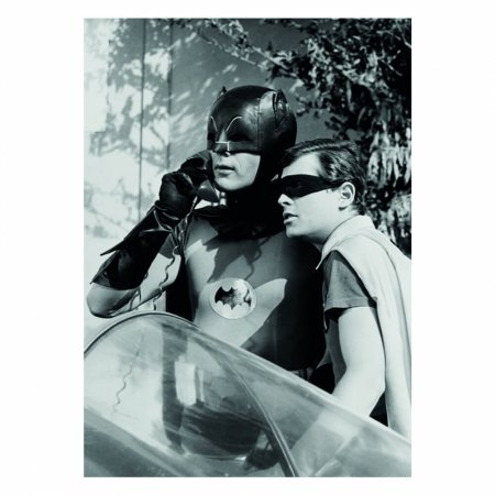 Quadro Tela movie batman robin alert 50x70