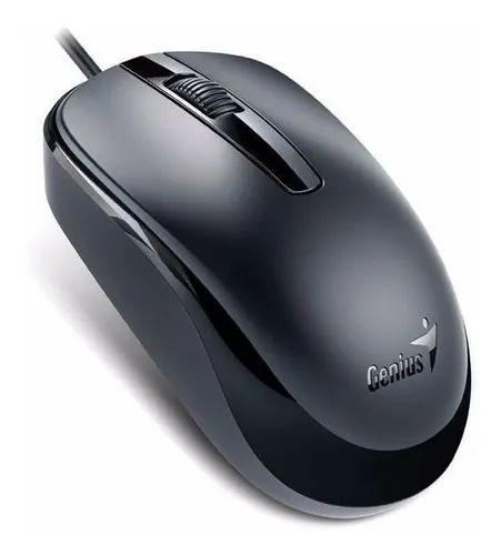 MOUSE GENIUS 31010105100 DX-120 USB PRETO (CST 260)