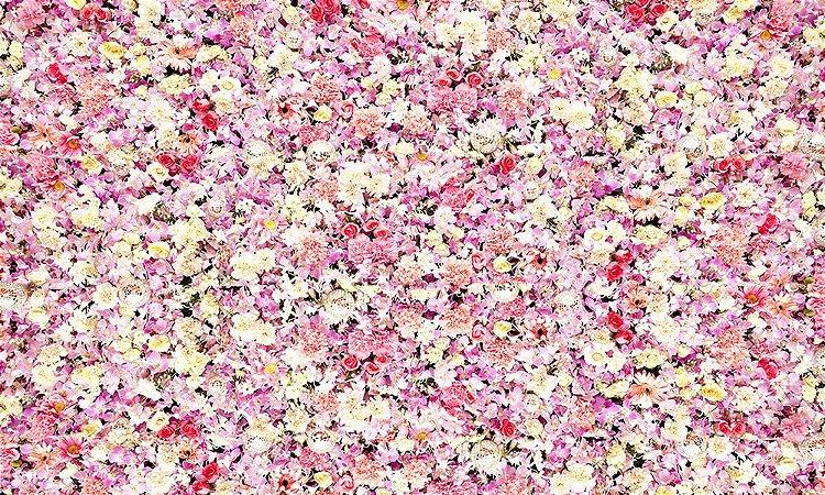 Painel de Festa em Tecido Sublimado 3d Cortina de Flores Rosas