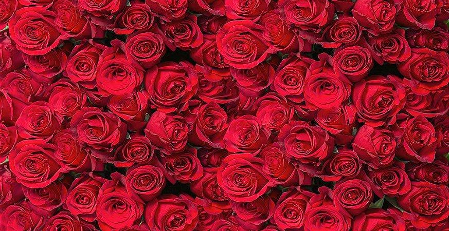 Painel de Festa em Tecido Sublimado 3d Lindas Rosas