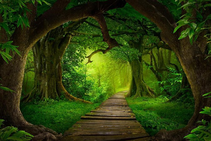 Painel de Festa em Tecido Sublimado 3d Caminho na Floresta