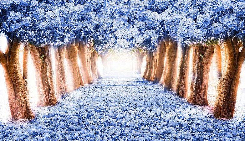 Painel de Festa em Tecido Sublimado 3d Floresta Azul