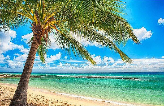 Painel de Festa em Tecido Sublimado 3d Coqueiro na Praia