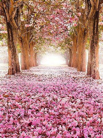 Fundo Fotográfico em Tecido Sublimado Bosque de Ipê Rosa