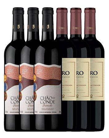 Kit 1: Inverno 2021 - 6 Vinhos Tintos 750ml