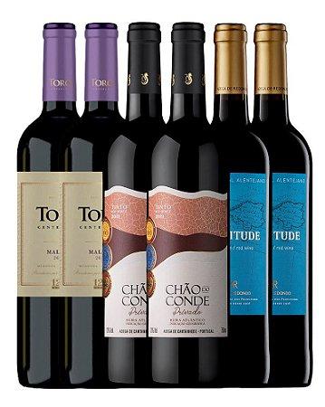 Kit 2: Inverno 2021 - 6 Vinhos Tintos 750ml