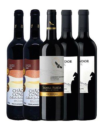 Mini Kit de Vinhos 4: 1x Santa Alicia Reserva Cabernet Sauvignon + 2 Condor Peak Malbec + 2 Chão do Conde Tinto Colheita Selecionada - 750ML
