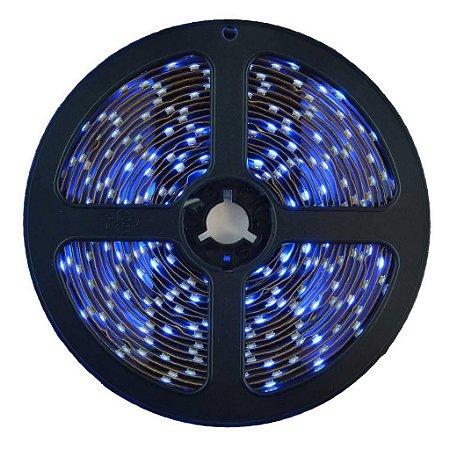 Fita LED 3528 Azul 5 Metros IP65 - À prova d'água - 24W