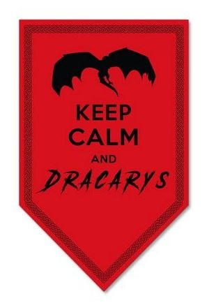 PLACA DECORATIVA - DRACARYS - 18x30 - Game of Thrones