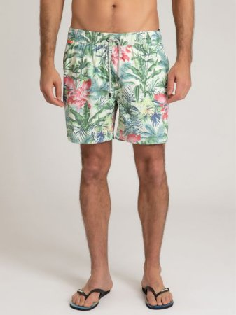 SHORTS FOREST