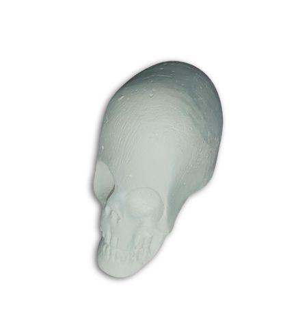 Crânio Branco Pequeno de Gesso