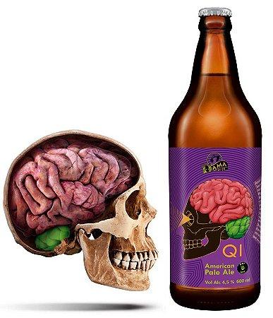 Cerveja Dama Q.I. American Pale Ale