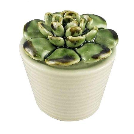 Mini Vaso Decorativo com Suculenta de Cerâmica