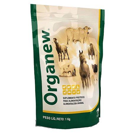 Suplemento Proteico Probiotico Organew 1kg