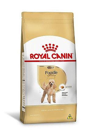 Ração Royal Canin Raças Específicas para Cães Adultos Poodle Adult