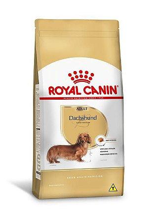 Ração Royal Canin Raças Específicas para Cães Adultos Dachshund Adult