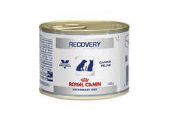 Ração Úmida Royal Canin Veterinary Diet Recovery Wet para Cães e Gatos 195g