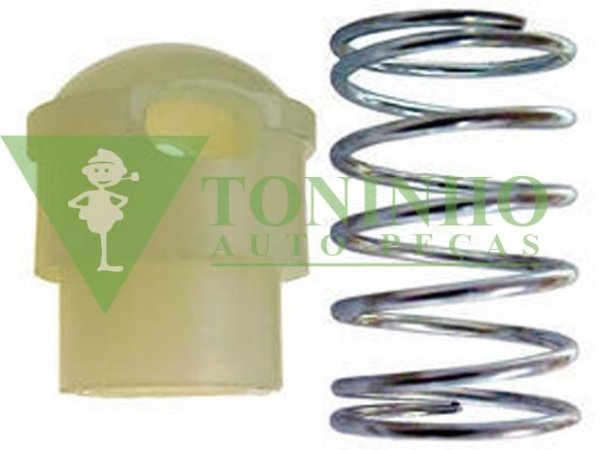 Reparo Valvula Radiador Oleo C/ Mola (3521880132)