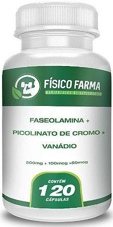 Faseolamina + Picolinato De Cromo + Vanádio 120 Cápsulas
