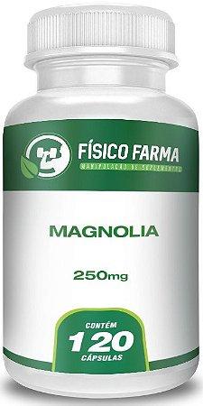 Magnolia 250 mg - 120 cápsulas