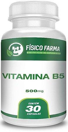 VITAMINA B5 (PANTOTENATO DE CÁLCIO) 500mg 30 Cápsulas