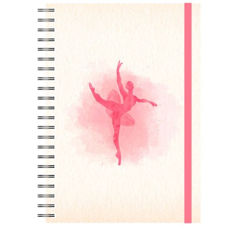 Controle Financeiro : Dança Vermelhinha