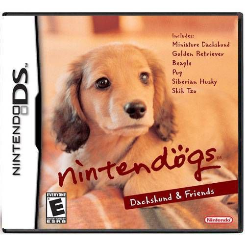 Nintendogs Dachshund E Friends Seminovo – DS