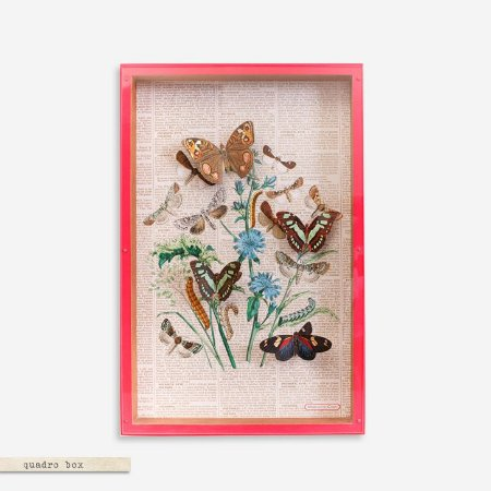 QUADRO BOX COLAGEM – FARFALLE PINK