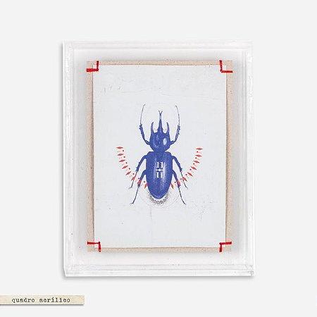 Quadro Acrílico Colagem P -  Escaravelho