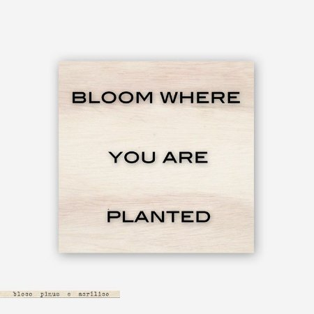 Quadro Pinus M - Bloom where you are planted