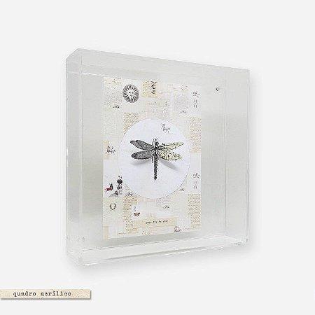 Quadro Caixa Acrílico Imã - Libélula Fly