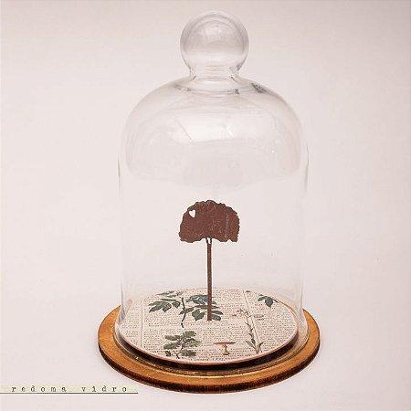 Redoma - Árvore