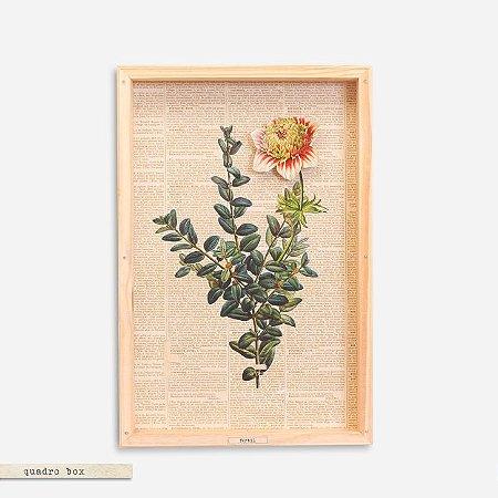 Quadro Box Colagem Botânica Ramo